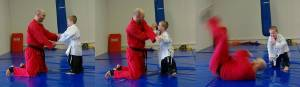 Kids Martial Arts Perth - Jack Throw Sequence