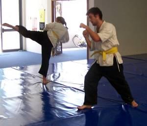 Karate Perth - Combos